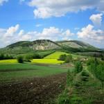 Pálavskými vrchy  – jižní Morava